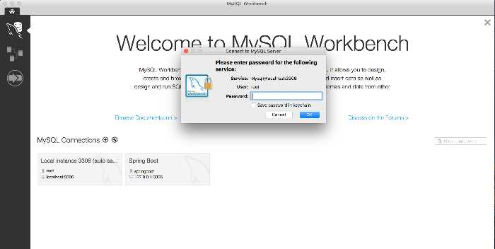[Thumbnail for MySQL_Workbench_rootpassword.png]
